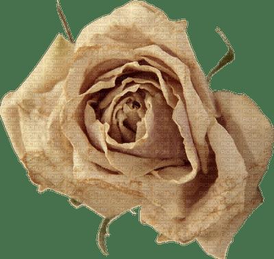Fleur.rose.Beige.Vintage.Flower.Deco.Victoriabea