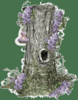 arbre.Cheyenne63