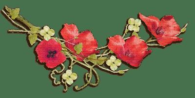 coquelicot deco poppy flower border