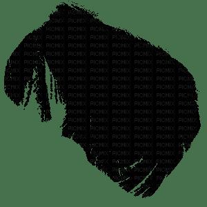 mèches cheveux/hair strands