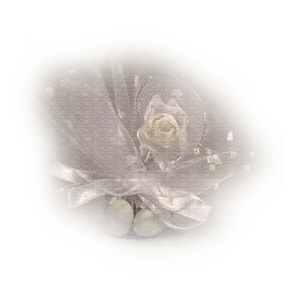 fond dentelle fleur blanc/HD