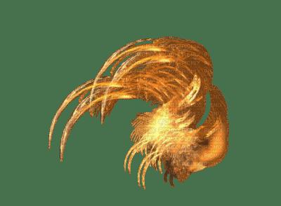 feu DRAGON