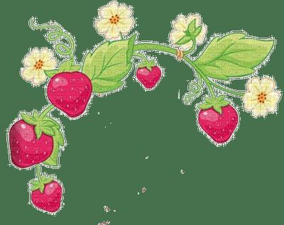 charlotte aux fraises  stawberry shortcake