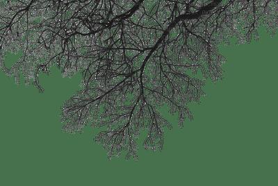 winter branches deco tree