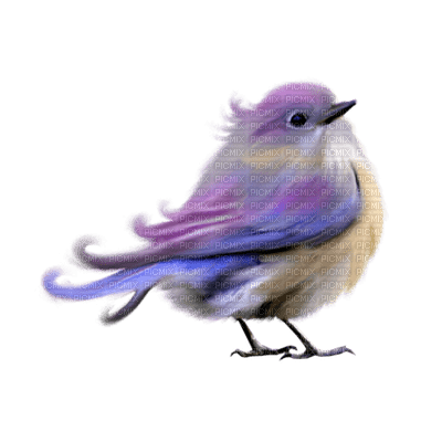 Kaz_Creations Birds Bird Colours Purple