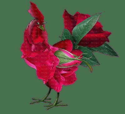 Coq en roses