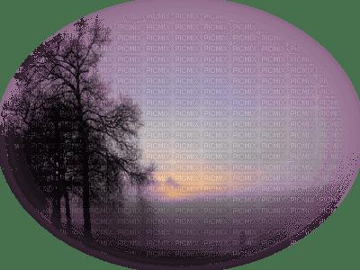 paysage-nature