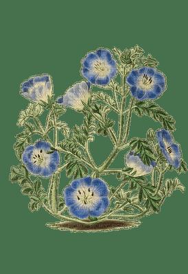 Kukka Vintage Flower Fleur Kukka Vintage Flower Fleurr
