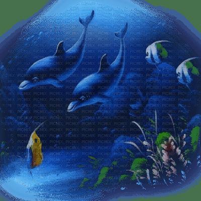 delphin dolphin dauphin