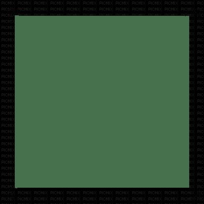 cecily-cadre transparent