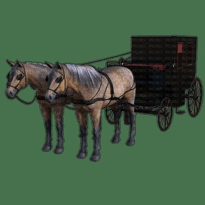 carriage, kuljetus, hevonen, horse, hevoset, horses