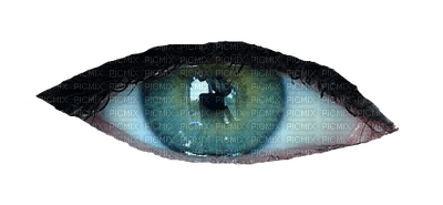 eyes-nitsa 1