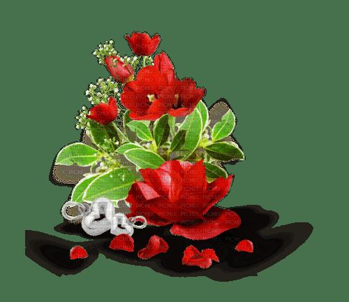 blomma--flower--red--röd