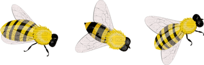 BEES ABEILLE