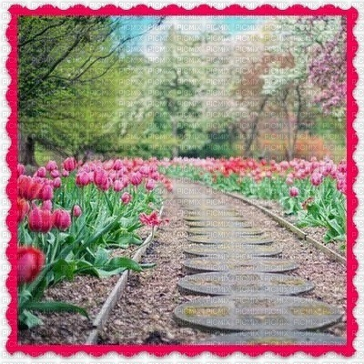 Frühling printemps spring