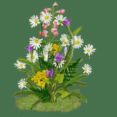 patymirabelle fleurs sur herbe