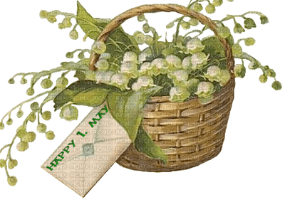 muguet happy 1. may  lily of the valley basket