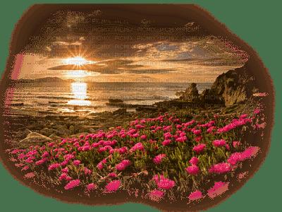 paysage  landscape-scenery-coucher du soleil-sunset-_evening_Blue DREAM70
