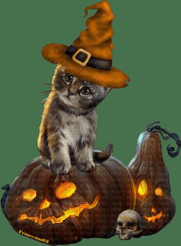 Halloween.Cat.Chat.Gato.Victoriabea