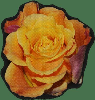 patymirabelle fleurs rose jaune
