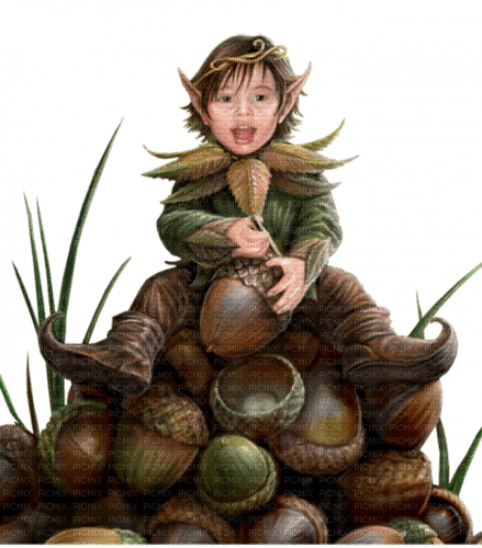 autumn elves automne elfes