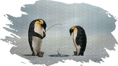 pingouin sur la glace