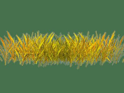 autumn grass deco automne herbe