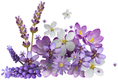 Kaz_Creations Flowers Purple