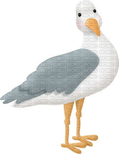 Kathleen Reynolds Beach Summer Bird Seagull