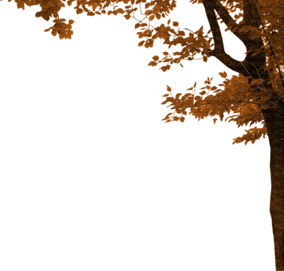 autumn tree border automne arbre bordure