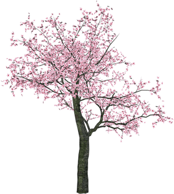 Kaz_Creations Deco Flowers Flower Colours Trees Tree