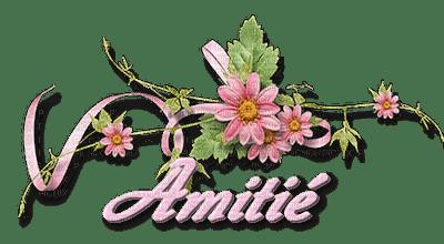 Amitié.Fleur.branche.printemps.rose.pink.text.texte.Victoriabea