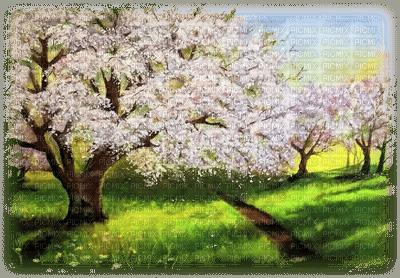 spring landscape, paysage