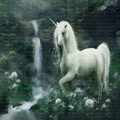 unicorn bg fantasy licorne fond fantaisie