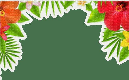 tropical flower border fleur bordure