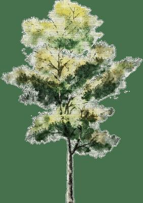 tree, sunshine3
