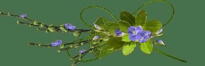 fleur_ flowers --           Blue DREAM 70