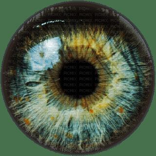 eye -Nitsa P