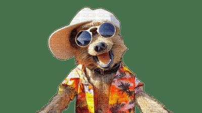 dog summer chien êtê