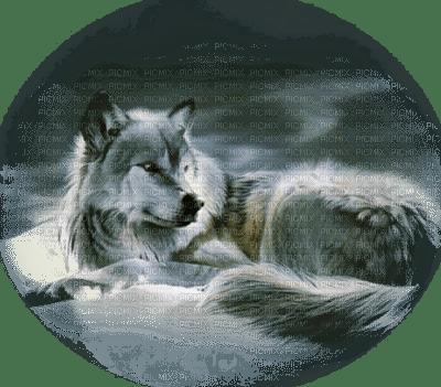 Tube Animaux Loup