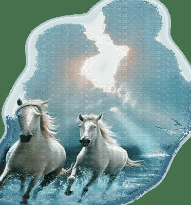 chevaux couple horses