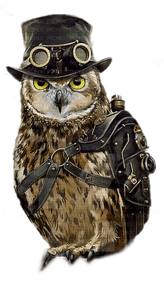 steampunk owl paintinglounge