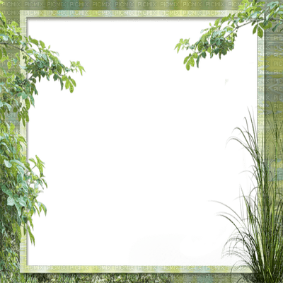 cadre vert frame green tree