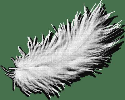 deco-plume