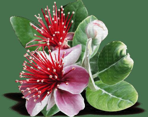 fleur orient