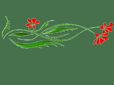 fleur rouge deco  flower border