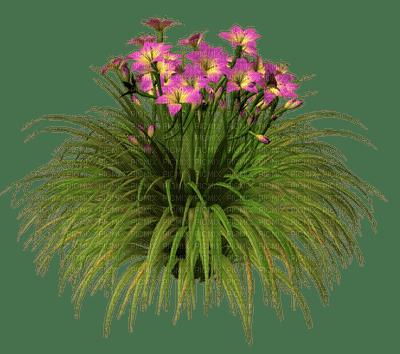 Kaz_Creations Deco Flowers Grass Colours