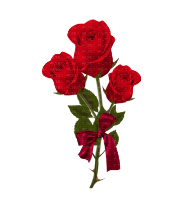 Rose Rouge Red Flower Fleur Rose Rouge Red Flower Love Amour Gif