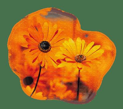 fleur-flower