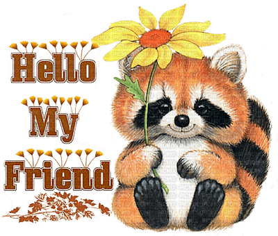 Hello friend how are you